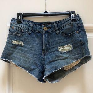DL Jean Shorts